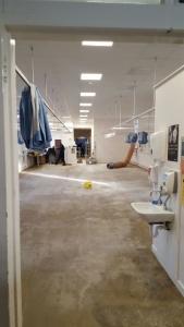 Removing Sub Flooring